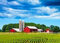Assurance Agricole